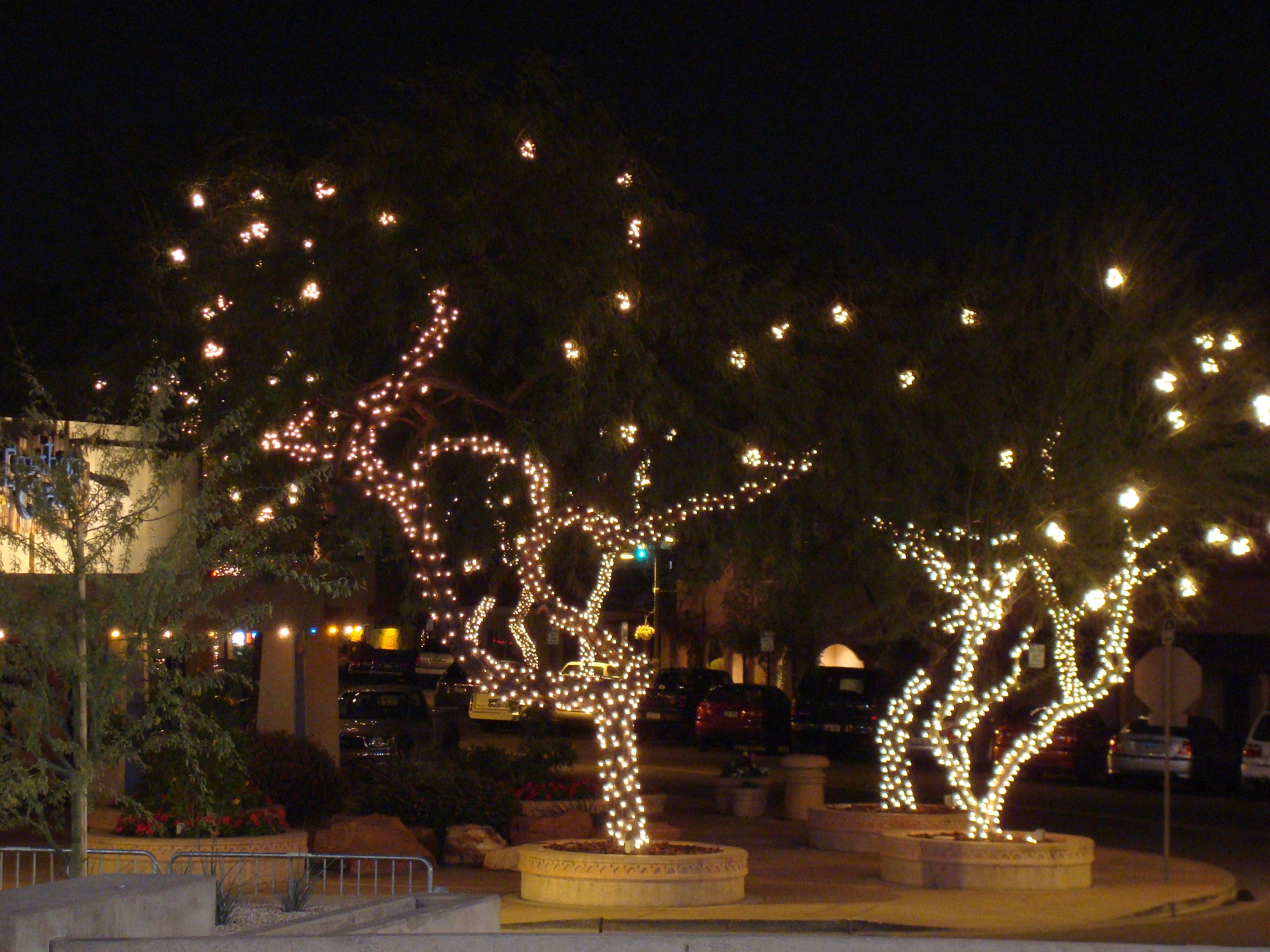 Elegant City Of Scottsdale