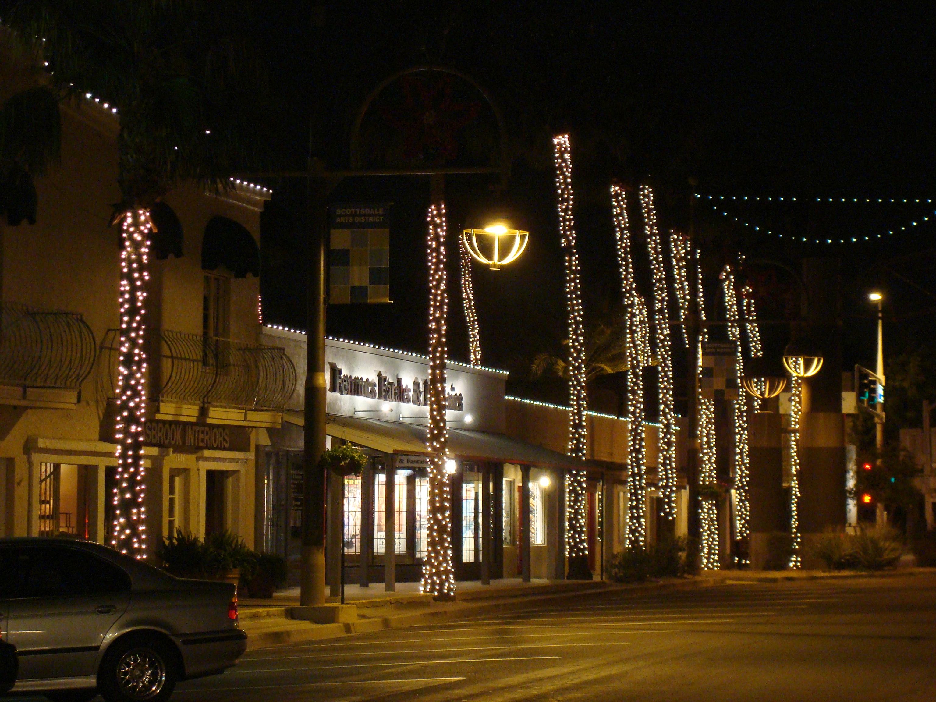Palm Tree Wrapping  Scottsdale, AZ