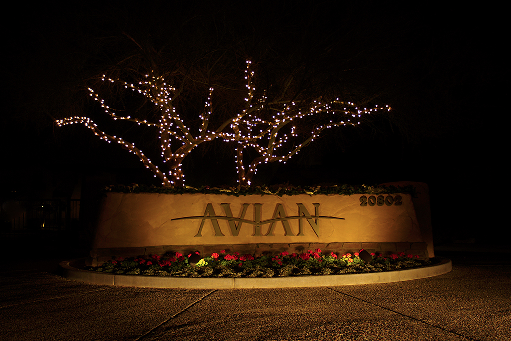 HOA Community - Custom Holiday Lighting Arizona