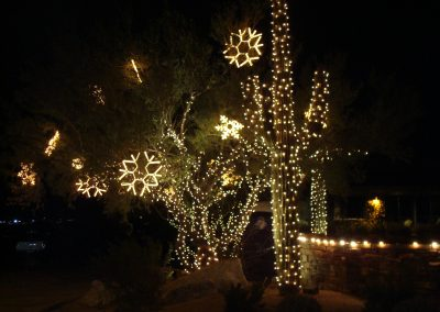 HOA Tree With Snowflakes