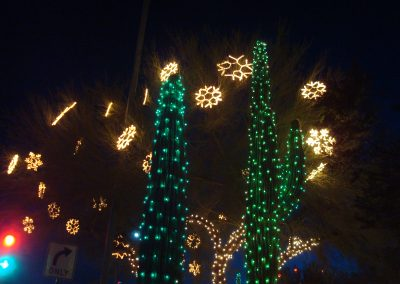 HOA Tree With Snowflakes and Green Wrapped Saguaros