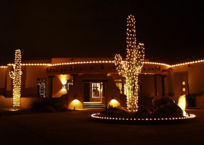 Holiday Light Wrapped Saguaro