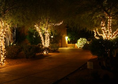 HOA Community Holiday Lighting Walkway