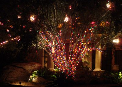 Multi-Color Wrapped Tree with Clusters