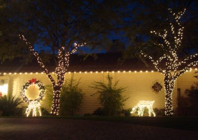 Lit and Decorated Christmas Wreath and Reindeer Displays