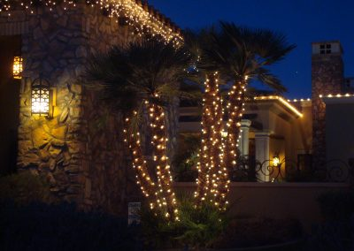 Warm White Wrapped and Decorated Palm Trees