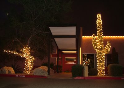 Local Enterprise Holiday Light Wrapped Saguaro and Tree