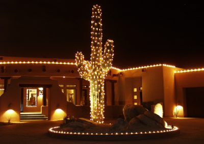 Lit and Decorated Saguaro