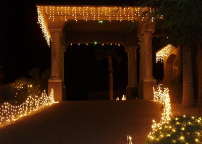 Holiday Light Lined Driveway