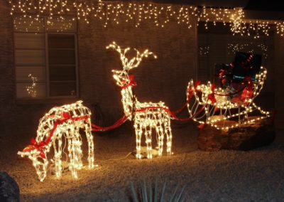 Holiday Reindeer Light Displays
