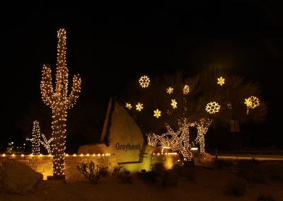HOA Community Holiday Lighting Wrapped Saguaro