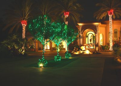 Multi-Color Wrapped Trees